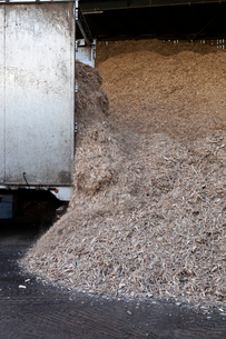 Stored organic waste heaped up in a large warehouse for biomass fuel 有oduction.の写真素材 [FYI02248650]