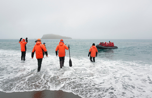 Group of people wading into the ocean on South Georgia, towards a rubber boat with another group ofの写真素材 [FYI02248697]