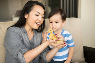 Smiling woman holding a yellow duckling in her hands, her young son watching.の写真素材 [FYI02248928]