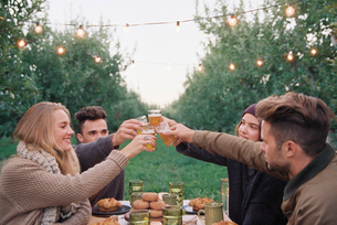 An apple orchard in Utah. Group of people toasting with a glass of cider, food and drink on a table.の写真素材 [FYI02248931]