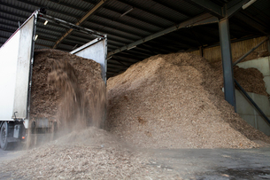 Stored organic waste being poured from a lorry into a large warehouse for biomass fuel 有oduction.の写真素材 [FYI02249236]
