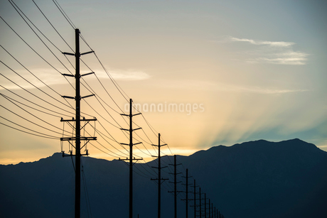 A row of poles and communication or power lines at sunset.の写真素材 [FYI02249486]