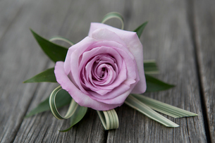 A boutonniere, button hole flower, pink rose.の写真素材 [FYI02249585]