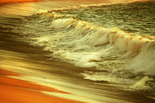 Waves and surf breaking on the shore at sunset.の写真素材 [FYI02249611]