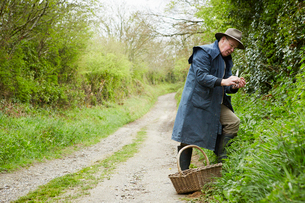 A man in a long coat and boots foraging for edible and tasty plants in the hedgerow.の写真素材 [FYI02249653]