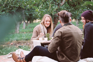 An apple orchard in Utah. Group of people sitting on the ground, food and drink on a table.の写真素材 [FYI02249859]