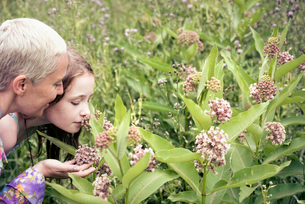 A mature woman and a young girl in a wildflower meadow looking closely at the flowers.の写真素材 [FYI02249878]