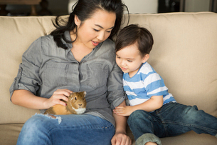 Smiling woman sitting on a sofa, a guinea pig sitting on her lap, her young son watching.の写真素材 [FYI02249983]