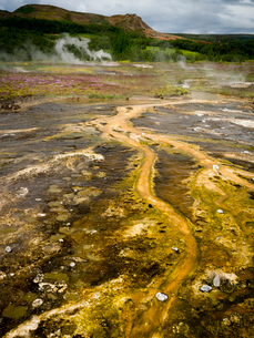 Steam rising from hot s有ings near a Geysir in an area of geothermal activityの写真素材 [FYI02250008]