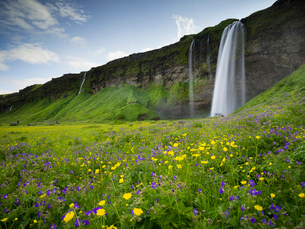 A waterfall cascade over a sheer cliff and wildflower meadows.の写真素材 [FYI02250037]