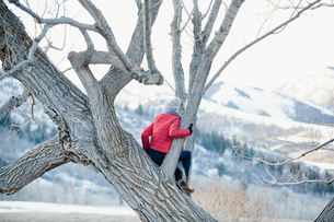 A girl in a red jacket sitting in a tree overlooking the landscape.の写真素材 [FYI02250058]