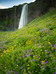 A waterfall cascade over a sheer cliff.の写真素材 [FYI02250294]
