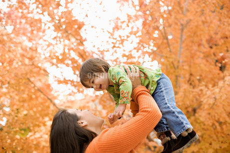 A woman holding a small child up in the air, under a canopy of autumn foliage.の写真素材 [FYI02250807]