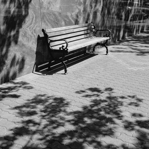 A bench on a downtown sidewalk in a town.の写真素材 [FYI02251251]