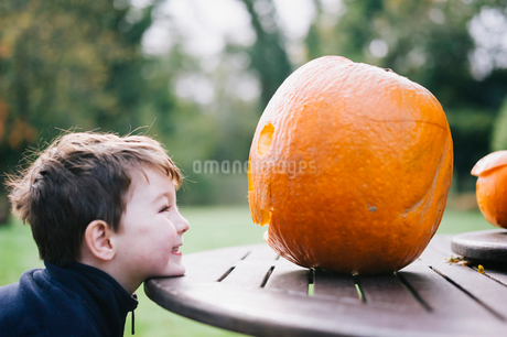 A small boy looking at a large pumpkin on a garden table.の写真素材 [FYI02251620]