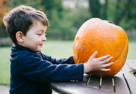A small boy holding a large orange skinned pumpkin.の写真素材 [FYI02251746]
