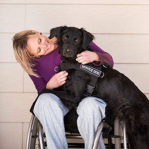 A mature woman wheelchair user with her arms around her service dog, a black Labrador whose front paの写真素材 [FYI02251794]
