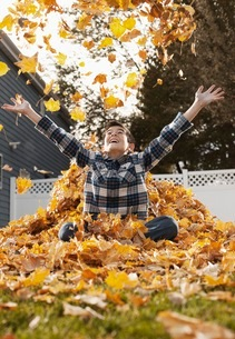 A young boy playing in a huge pile of raked autumn leaves.の写真素材 [FYI02252512]