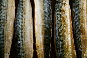 Smoked fish fillets laid out in a row.の写真素材 [FYI02252851]