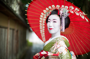 A woman dressed in the traditional geisha style, wearing a kimono and obi, with an elaborate hairstyの写真素材 [FYI02253082]