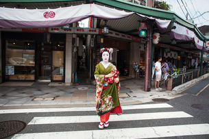 A woman dressed in the traditional geisha style, wearing a kimono and obi, with an elaborate hairstyの写真素材 [FYI02253094]