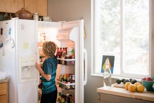 Family preparing breakfast in a kitchen, boy standing at an open fridge.の写真素材 [FYI02253106]