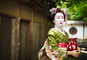 A woman dressed in the traditional geisha style, wearing a kimono and obi, with an elaborate hairstyの写真素材 [FYI02253292]