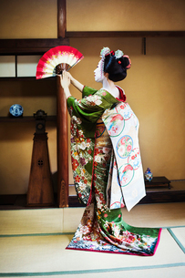 A woman dressed in the traditional geisha style, wearing a kimono and obi, with an elaborate hairstyの写真素材 [FYI02253340]