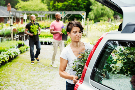 Car parked at a garden centre, a woman loading flowers into the boot.の写真素材 [FYI02253368]