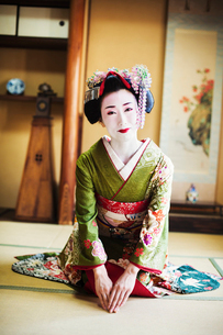 A woman dressed in the traditional geisha style, wearing a kimono and obi, with an elaborate hairstyの写真素材 [FYI02253600]