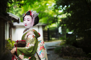 A woman dressed in the traditional geisha style, wearing a kimono and obi, with an elaborate hairstyの写真素材 [FYI02253682]
