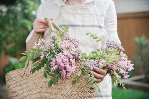 A woman holding a basket of cut branches with pink flowers.の写真素材 [FYI02253683]