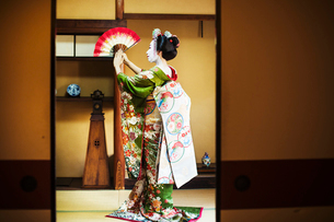 A woman dressed in the traditional geisha style, wearing a kimono and obi, with an elaborate hairstyの写真素材 [FYI02253688]