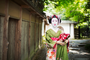 A woman dressed in the traditional geisha style, wearing a kimono and obi, with an elaborate hairstyの写真素材 [FYI02253729]