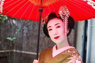 A woman dressed in the traditional geisha style, wearing a kimono with an elaborate hairstyle and flの写真素材 [FYI02253901]