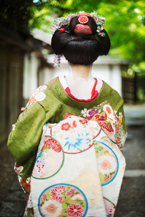 A woman dressed in the traditional geisha style, wearing a kimono and obi, with an elaborate hairstyの写真素材 [FYI02253904]