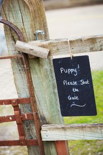 A chalk sign on a garden gate Puppy! Please shut the gate.の写真素材 [FYI02254101]