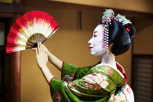 A woman dressed in the traditional geisha style, wearing a kimono and obi, with an elaborate hairstyの写真素材 [FYI02254121]