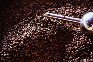 Specialist coffee shop. A heap of roasted brown coffee beans.の写真素材 [FYI02254131]