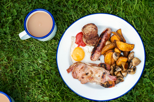 High angle view of English Breakfast on a plate and mug of tea on a lawn.の写真素材 [FYI02254151]