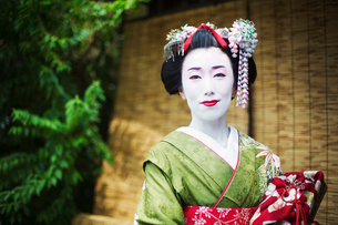 A woman dressed in the traditional geisha style, wearing a kimono and obi, with an elaborate hairstyの写真素材 [FYI02254178]