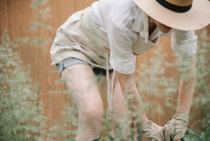 A woman in a wide brimmed straw hat working in a garden, digging.の写真素材 [FYI02254392]