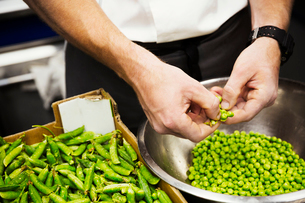 Close up of a chef shelling fresh green peas.の写真素材 [FYI02254450]