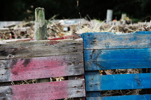A compost bin made of old wooden pallets, with dead flowers, garden waste and soil.の写真素材 [FYI02254616]