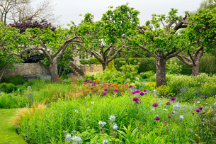 View across a garden with flower beds and trees in Oxfordshire.の写真素材 [FYI02254761]