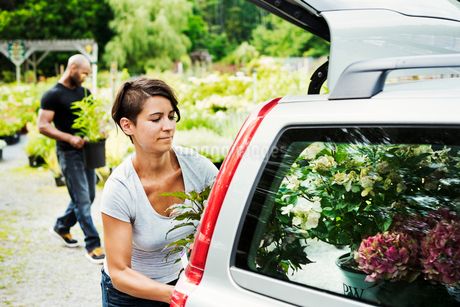 Car parked at a garden centre, a woman loading flowers into the boot.の写真素材 [FYI02254769]
