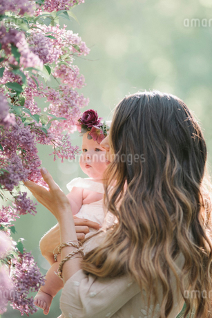 Mother holding baby girl with a flower wreath on her head.の写真素材 [FYI02254786]