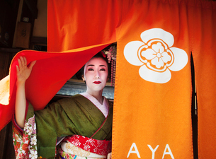 A geisha emerging from a door lifting up the curtain, in traditional kimono and makeup.の写真素材 [FYI02254883]