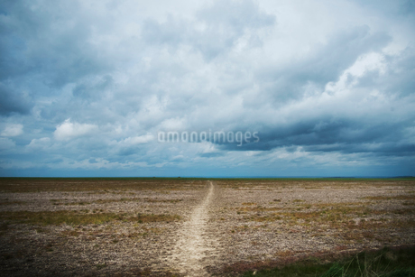 Walking along the ancient Ridgeway path through the county of Berkshire.の写真素材 [FYI02254976]