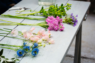 Fresh flowers laid on a florist's workbench, bright pink, pale pink and blue and greenery sprigs.の写真素材 [FYI02255055]
